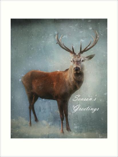Christmas Deer by Carol Bleasdale