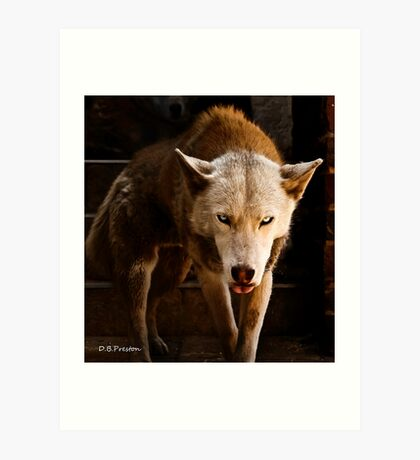 You have my attention. Art Print