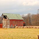 Just Another Day on the Farm by Grinch/R. Pross