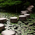 Heian Stepping Stones by Skye Hohmann
