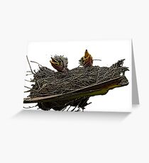 Hungry baby birds Greeting Card