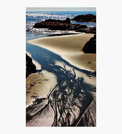Sand, Sea and Sunlight Photographic Print