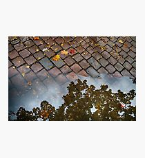 Autumn - Herbst Photographic Print