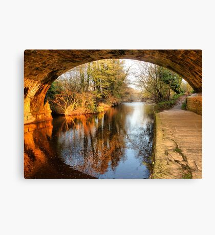 Under the Aquaduct. Canvas Print