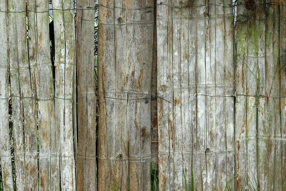 Bamboo Wood Fence by rhamm