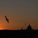 Flying Home by Alfredo Estrella