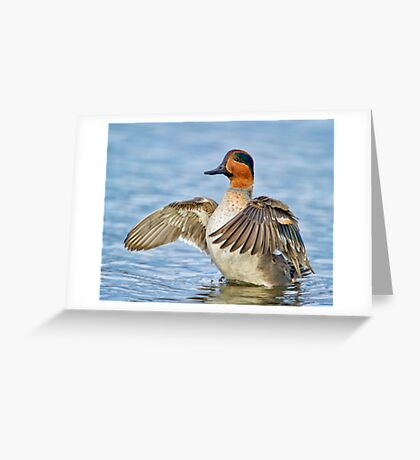 Flapping Away Greeting Card