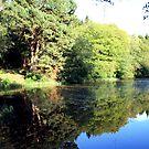 Middle Lake - Ampleforth by technochick