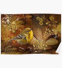 Warbler in Wonderland Poster