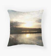 Exeter I, Devon Throw Pillow