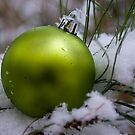 Green Ornament in Snow by crystalseye