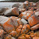 The beautiful rocks edging Binalong Bay, Tasmania, Australia by Kristi Robertson