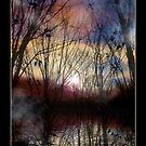 Fey Sunset by Rayvn Navarro