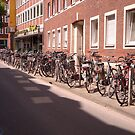 Munster - The bicycle capital of Germany by Jekusha
