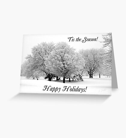 Winter White Christmas Card Greeting Card