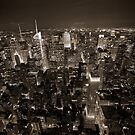 Manhattan Skyline at Night by James Torrington