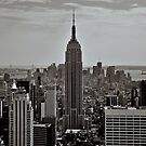 Empire State Building by James Torrington