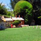 The Village Green by Akrotiri