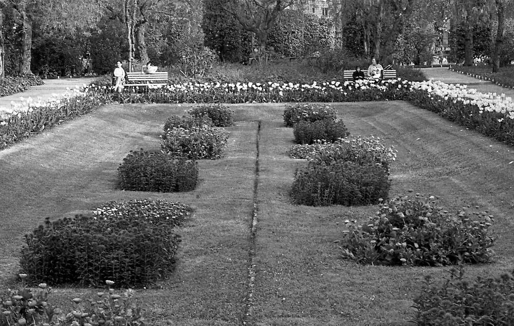 Turo Park by James2001