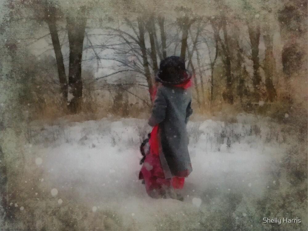 Walking In Winter Wonderland by Shelly Harris