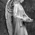 Angel of the Morning by Debbie  Roberts