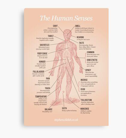 The Human Senses Canvas Print