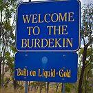 Welcome to the Burdekin by Kim Austin