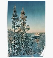 trees with a view Poster