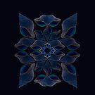 Blue Shells iP4 by Hugh Fathers