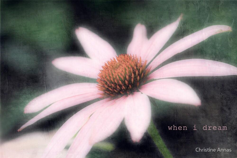 when i dream, i dream of you by Christine Annas