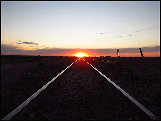 Along the line by Brenda Dahl