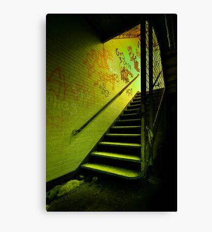 The Shining Darkness Canvas Print