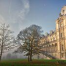 Scandinavian School - Brussels, Belgium by Ulla Jensen