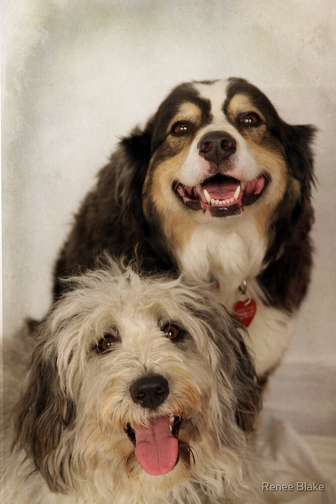 Lola and Bailey by Renee Blake