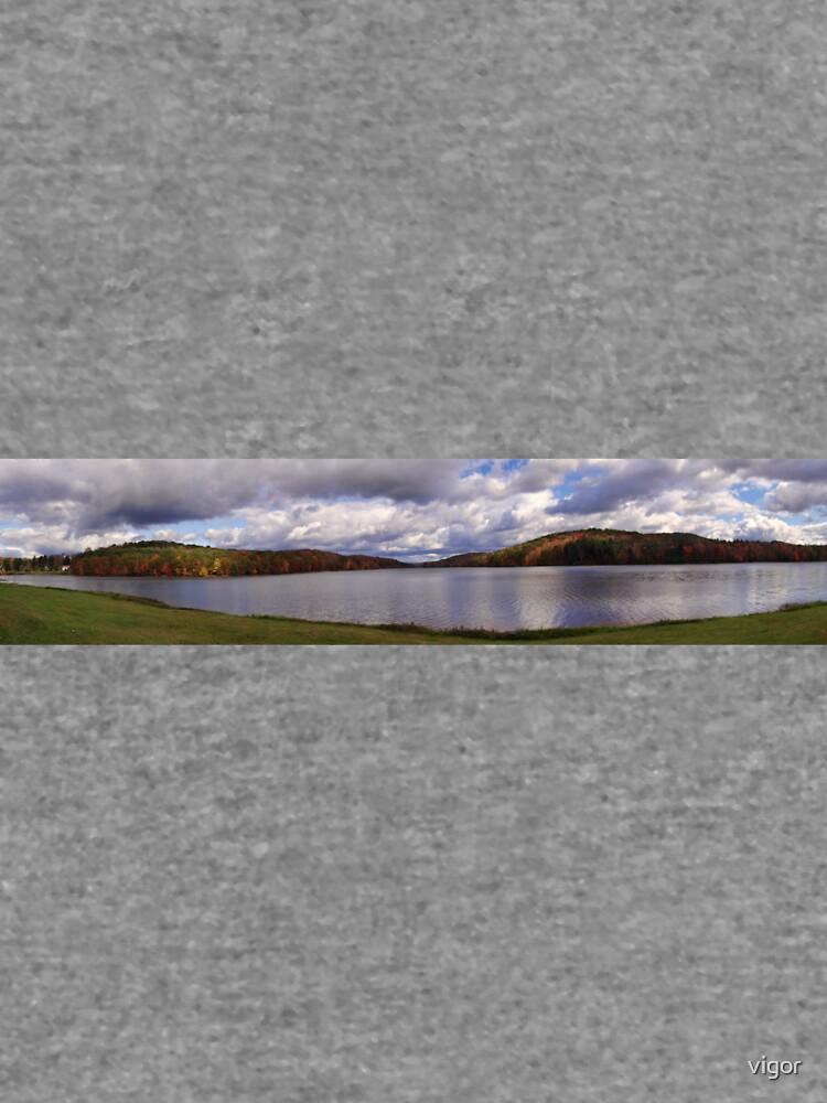 The Reservoir by vigor