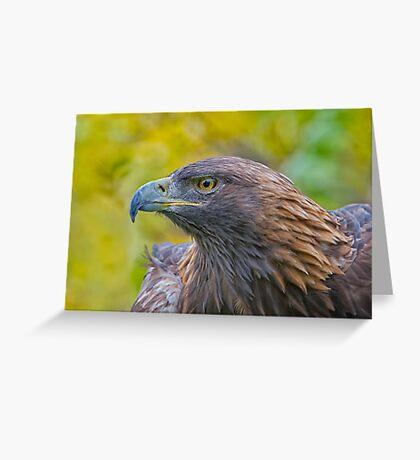 Golden Eagle Profile Greeting Card