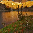 Minaret Lake Sunrise by Nolan Nitschke