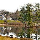 Ringwood Manor, NJ by mikepaulhamus