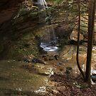 Wrigley Falls Amphitheater by Kent Nickell