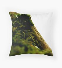 Forgotten Life, Always There Throw Pillow