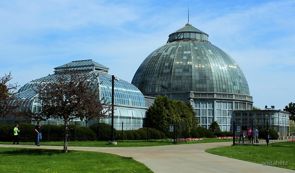 Anna Scripps Whitcomb Conservatory On Belle Island by anitahiltz