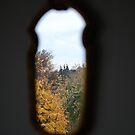 Window to the outside world by Febev