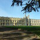 Ashton Court Mansion - near Bristol UK by Meladana