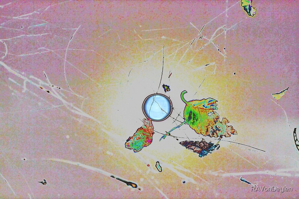 Pink Orb by RAVonDeylen