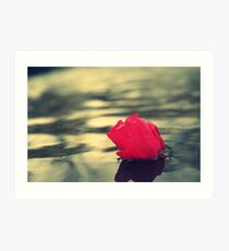 Water with a flower Image Art Print