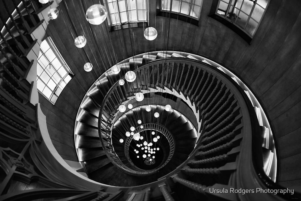 Fibonacci by Ursula Rodgers Photography