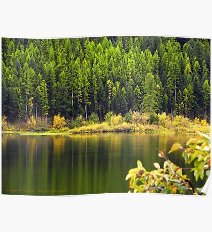 Salmon Lake Reflections Poster