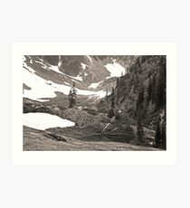 trail in heather meadows, wa, usa (sepia) Art Print