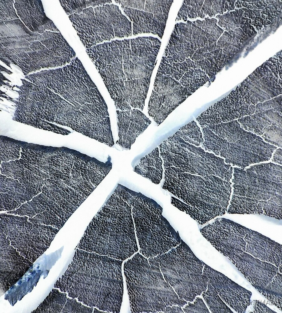 Snowy Desert Stump by GriffMAD