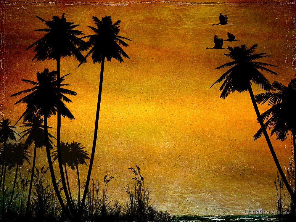Could Be Paradise by Christine Annas